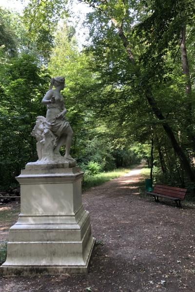 Le Bois du Cerf (Etiolles)