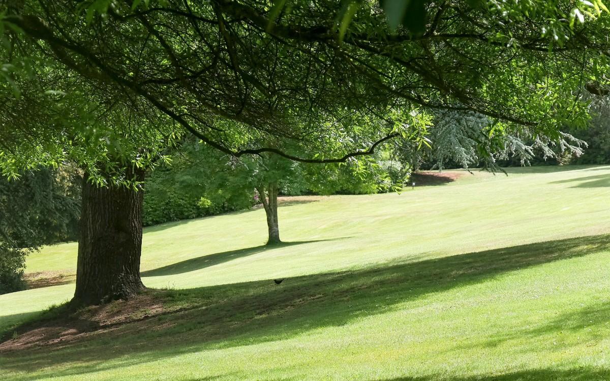 Entretien de parcs et jardins, gestion différenciée